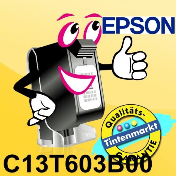 C13T603B00-1